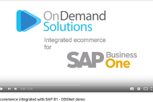 e-commerce integrated with SAP B1 – ODSNet demo