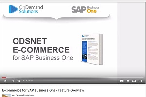 e-commerce for SAP Business One – Feature Overview